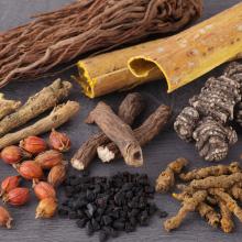 8種類の和漢植物